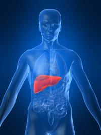 Liver Disease | Sepsis Alliance